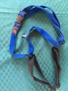 Dog harness Bellbowrie Brisbane North West Preview