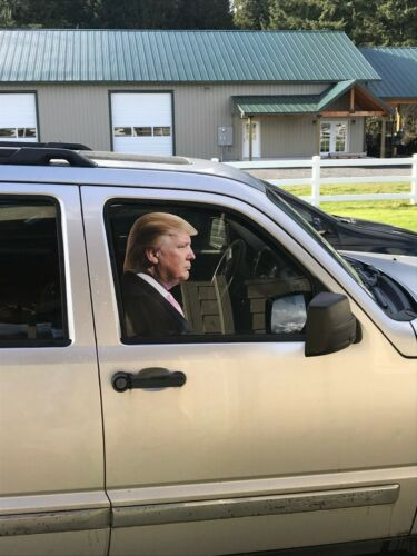 Trump car sticker, life size, adhesive back, passenger side window.