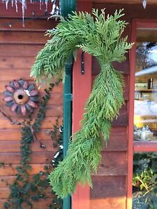Christmas Wreaths  / Candy Canes