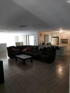 Room mate wanted $170 per week Baldivis Rockingham Area Preview