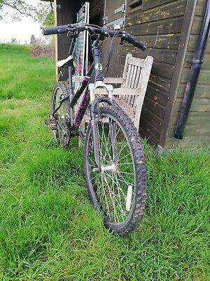 Python rock bike