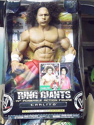 WWE RING GIANT CARLITO MAKE OFFER