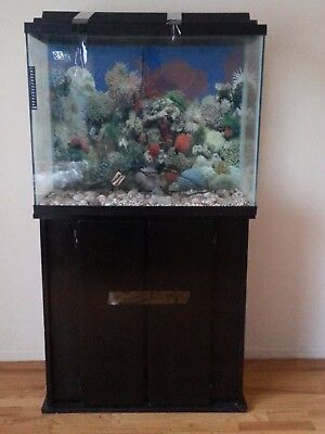 Used 38 gallon aquarium tank and wood stand with storage (local pickup only)