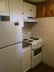 Updated One Bedroom Suite Available Now