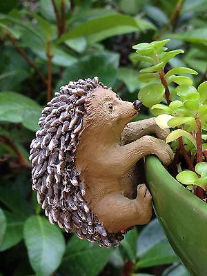 Miniature FAIRY GARDEN ~ Hedgehog Flower Pot Hugger ~ NEW