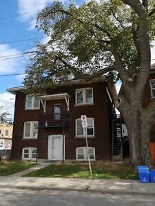 NEWLY RENOVATED BACHELOR APT STEPS AWAY FROM GAGE PARK