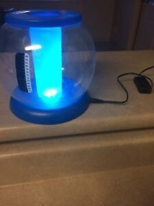 Light up' Betta Fish Tank