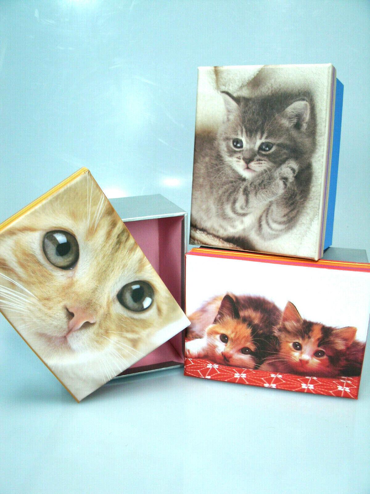 1,99€/Stk Geschenkkarton 3 Stk Baby Katze NEU Geschenkpackung Geschenk Karton #4