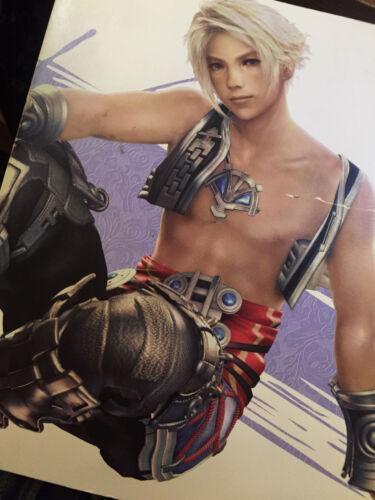 Final Fantasy XII --------BOOK