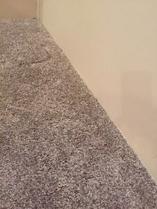 12 X 12 carpet with under lay - new condition