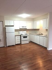 Bright and Clean All Inclusive Apartment.