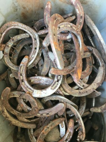 24 Various Sizes Rusty, Dust, Nails Horseshoes GOOD Condition for Art