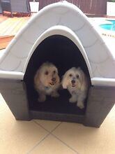 Dog Kennels great deal Mango Hill Pine Rivers Area Preview