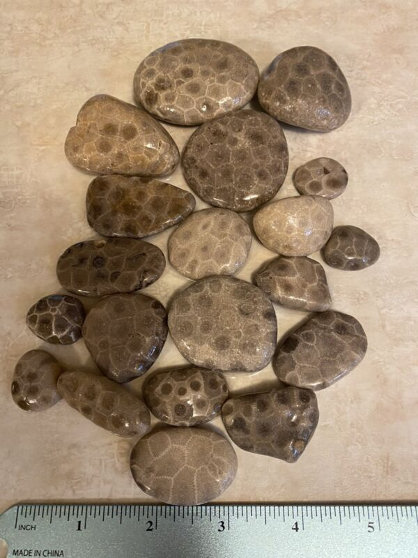 20 UNPOLISHED PETOSKEY STONES. Total weight 1.11LB