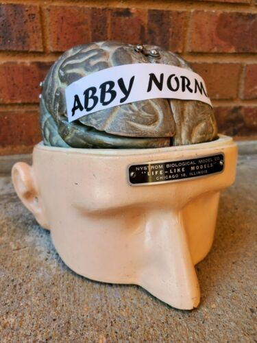 ANTIQUE NYSTROM HUMAN BRAIN HEAD ANATOMICAL LIFE-LIKE TEACHING DISPLAY MODEL