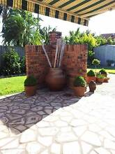 Large Terracotta Urn Carindale Brisbane South East Preview