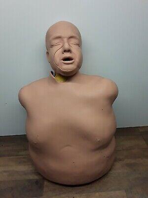 Fat Old Fred Cpr Torso Manikin