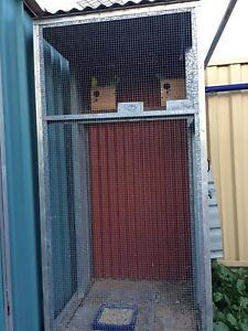 Budgies. Cage and nest Canning Vale Canning Area Preview