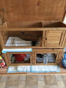 Outside or inside cage for small animals