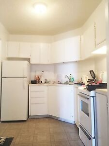 Beautiful 3 1/2 - Perfect for students/Downtown worker