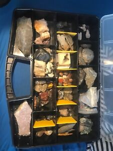 Large Rock, Crystal, Fossil and Mineral Collection