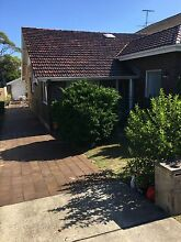 Room in Great House for Dog Lover!! North Bondi Eastern Suburbs Preview