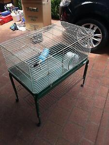 Rabbit or Guinea Pig Hutch Belconnen Belconnen Area Preview