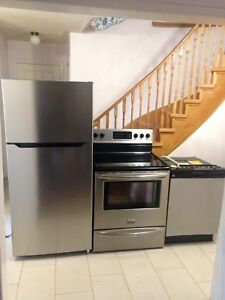Stainless Steel Perfect Condition Fridge, Stove And Dishwasher