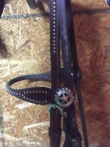 Western star bridle