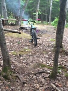 Trade for Down hill or good mountain bike