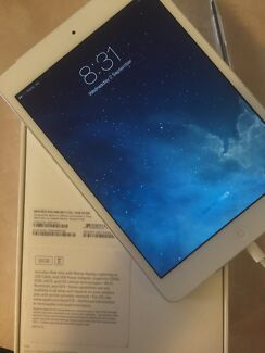 iPad mini with wifi Wanneroo Wanneroo Area Preview