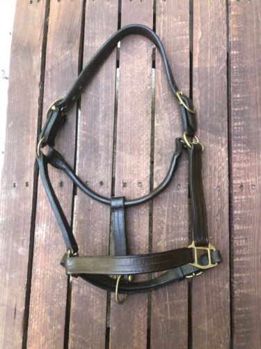 Full-size Brown Leather HALTER - CHEAP!