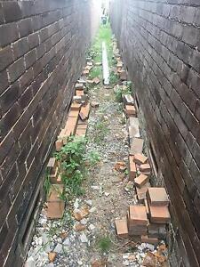 Paver bricks, mixed condition Leichhardt Leichhardt Area Preview