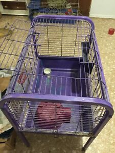 Small animal cage with accessories must go