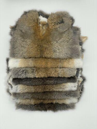 *5 pack*  Budget Rabbit Pelt Hide Fur Lower Grade for Crafts Natural Hare colors