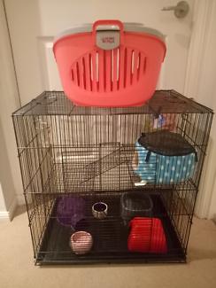 Rat cage large