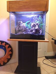 Fish tank for sale with all the percs!!