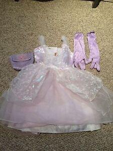 Barbie Princess Outfit