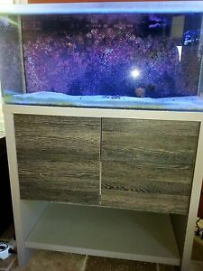 Fluval 30 gallon fish tank
