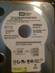 250gb western digital hardrive