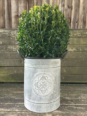 Tall Zinc Metal Vintage Style Garden Planter Flower Pot Plant Tub With Handles