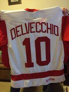 Alex Delvecchio autographed jersey