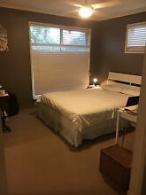 Manly west room to rent Manly West Brisbane South East Preview