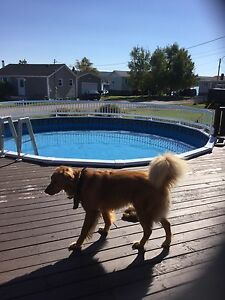 Home for sale in Botwood