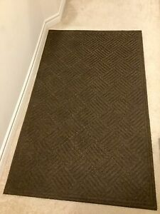 Entrance / Mud room rug