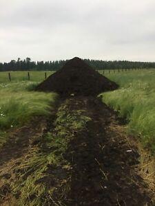 Aged cattle manure