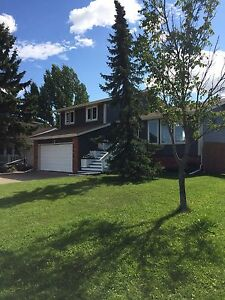 Newly Renovated 4 Level Split for Sale in Morinville