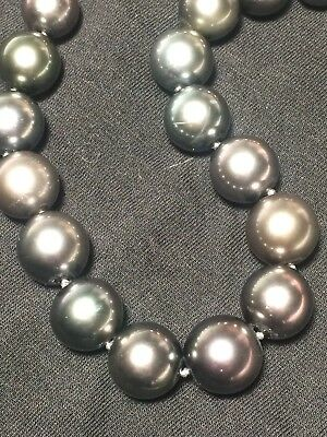 "Tahitian Pearls Graduated Necklace 14k WG Clasp Metallic Chocolate 17"" Round ()"