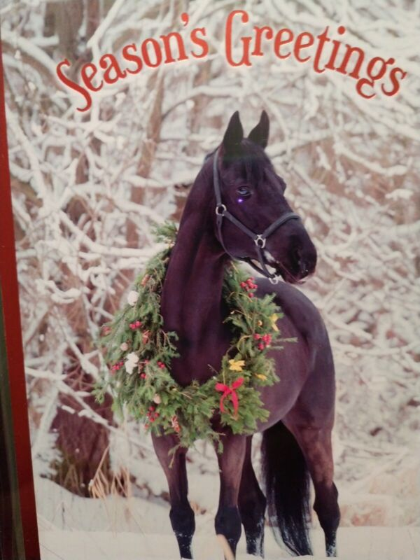 LEANIN TREE  CHRISTMAS CARD SET CHRISTMAS HORSE 10PK BUY IT NOW IN STORE