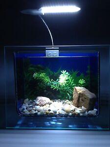 Nano komplettset aquarien ebay for Aquarium komplettset